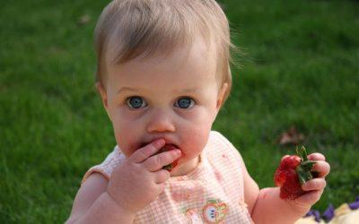 Απογαλακτισμός βρέφους. Μετάβαση βρέφους σε στερεές τροφές. Αλεσμένες ή μικροτεμαχισμένες τροφές;